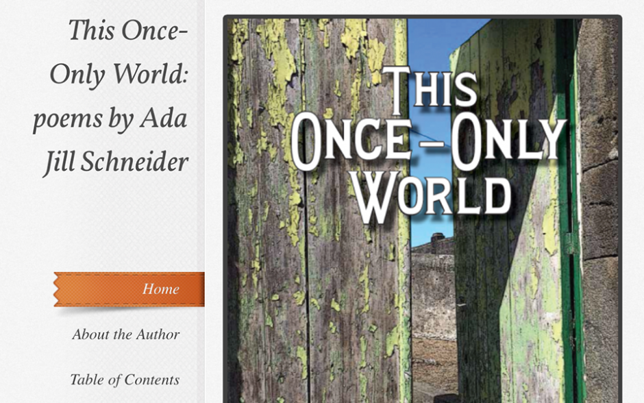 This Once-Only World, poems by Ada Jill Schneider